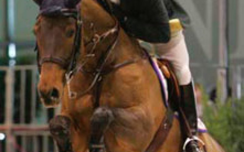 Brazil wins gold and Canada silver at Pan American Games showjumping
