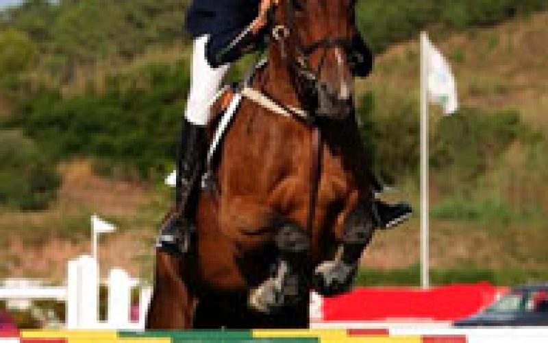 Auvers: Gold for Great Britain's Young Riders