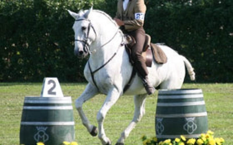 2007 European Working Equitation Championships