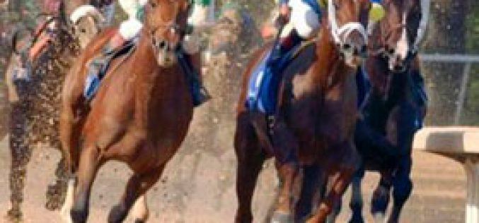 Equine Influenza in Australia could affect Melbourne Cup