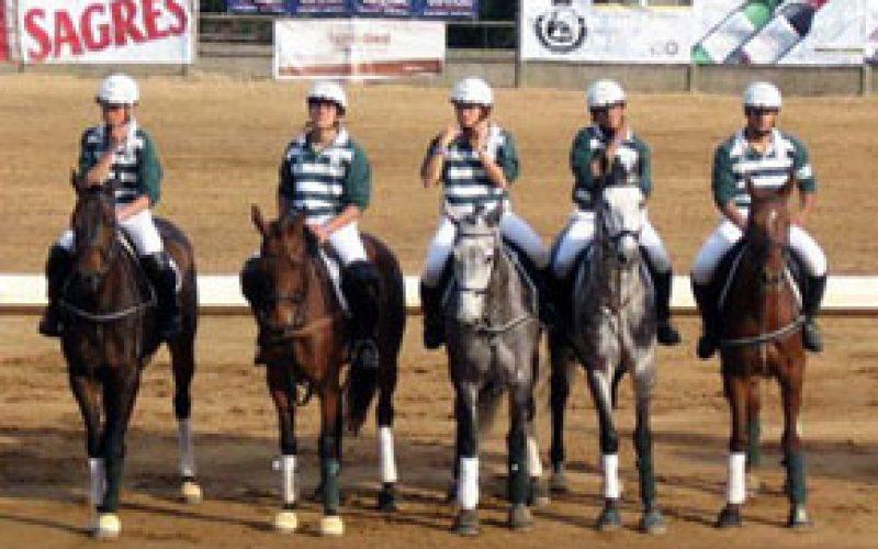 "Horseball Champions League no ""Stockholm International Horse Show"""