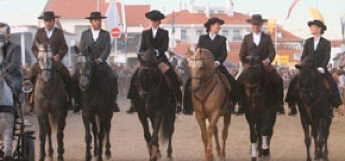 Golegã: É proíbido andar a cavalo no Largo do Arneiro a partir da uma da manhã