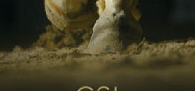 Rolex presented the 15th Edition of the CSI 5* Casas Novas
