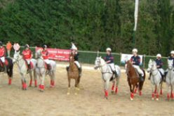 International Under 21's Horseball Cup – Sintra 2007