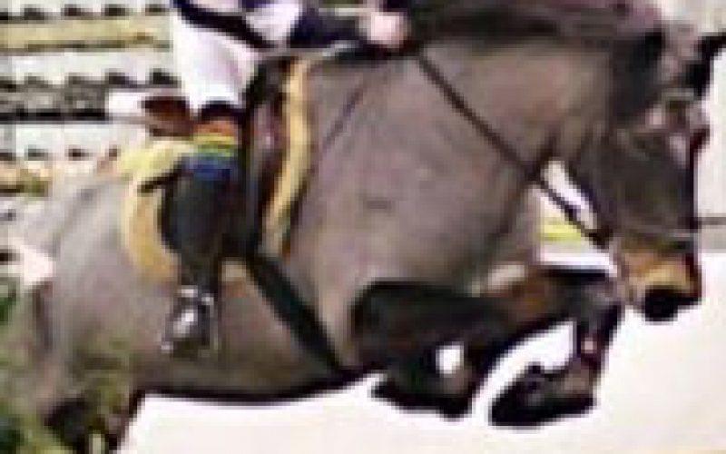 Cavaleira juvenil em acidente trágico