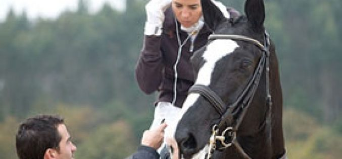 Circuito do Sol: Terminaram as provas para cavalos novos