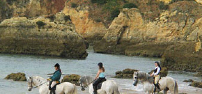 Congresso Internacional de Turismo Equestre em Alter