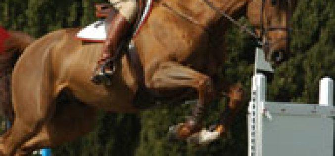 Circuito do Sol: Steve Guerdat venceu o Grande Prémio