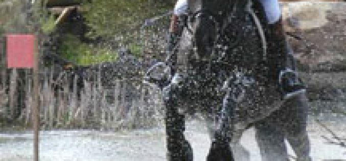 Jung keeps lead to win Fontainebleau horse trials