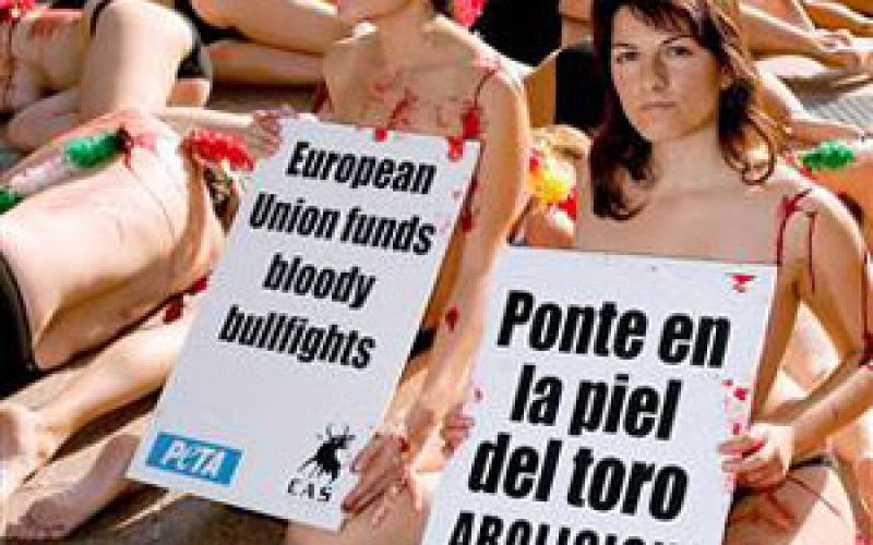 Semi-naked anti-bullfight protest at EU parliament