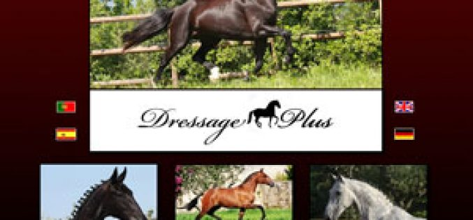 Dressage Plus – Equestrian Sport Ltd. – launches today its official webpage
