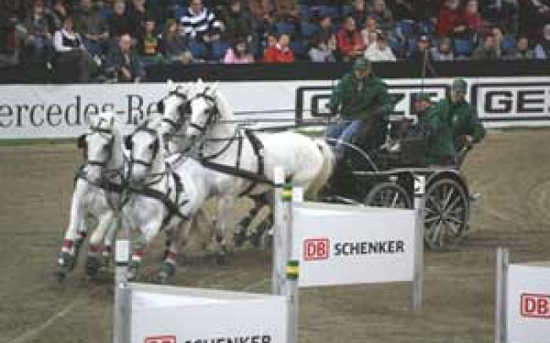 Dobrovitz steals the show in Stuttgart