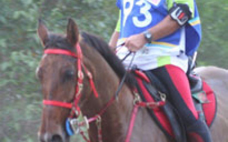 João Raposo em 25º lugar no Ranking Mundial de Endurance da FEI