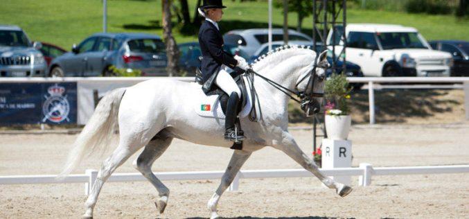 O cavalo Ibérico no Europeu de Dressage