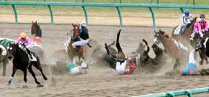 Six jockeys injured in horse racing accident