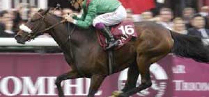 Arc heroine Zarkava produces first foal