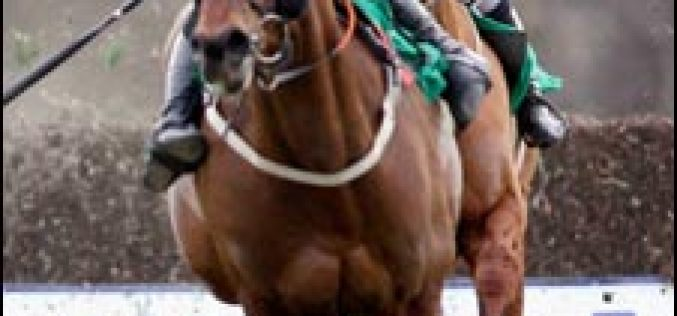 Tragic ending to the Ulster Grand National