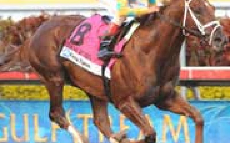 Eskendereya scratched from the Kentucky Derby