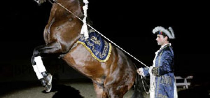 I Gala Anual de Criadores do Cavalo Puro Sangue Lusitano