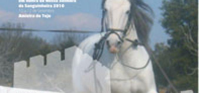II Romaria A Cavalo à Senhora da Sanguinheira
