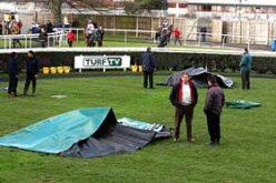 Horses 'Electrocuted' At Newbury Races
