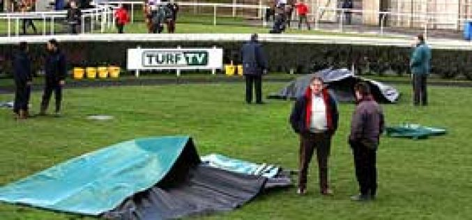 Horses 'Electrocuted' At Newbury Races