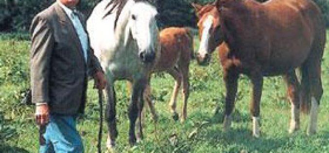 Fernand Leredde vende os seus cavalos