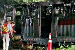 Trailer fire kills six race horses