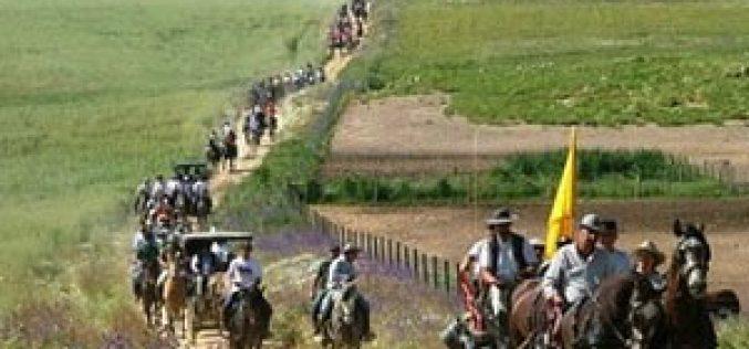 Mais de 250 Cavalos na Romaria a cavalo Moita – Viana do Alentejo