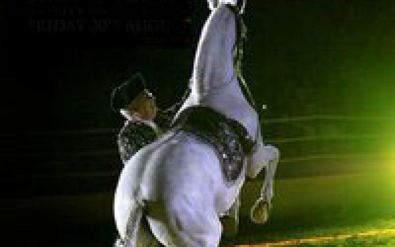 Assistir a uma Gala Equestre no Algarve