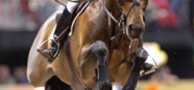 """""""Shutterfly"""" despede-se da alta competição em Aachen"""