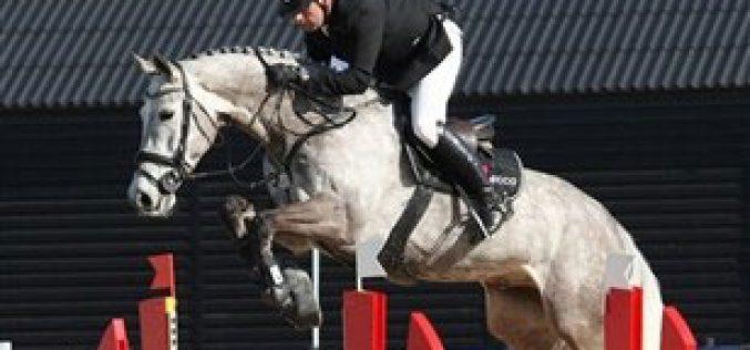 Lansink e Nagel optam por cavalos nascidos na Escandinávia