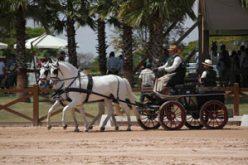 2º etapa do Campeonato Nacional de Atrelagem (Brasil)