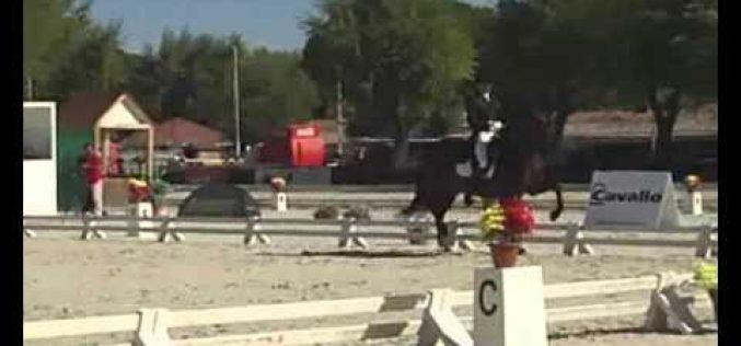 Campeonato de Espanha de Dressage 2011