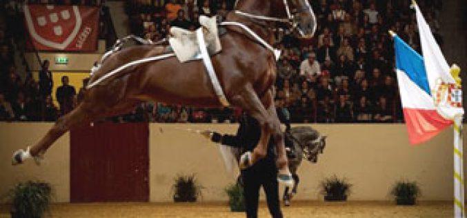 Unesco: Equitação Francesa também é património imaterial