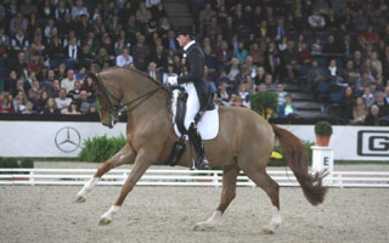 Ulla Salzgeber takes the Grand Prix Freestyle in Stuttgart