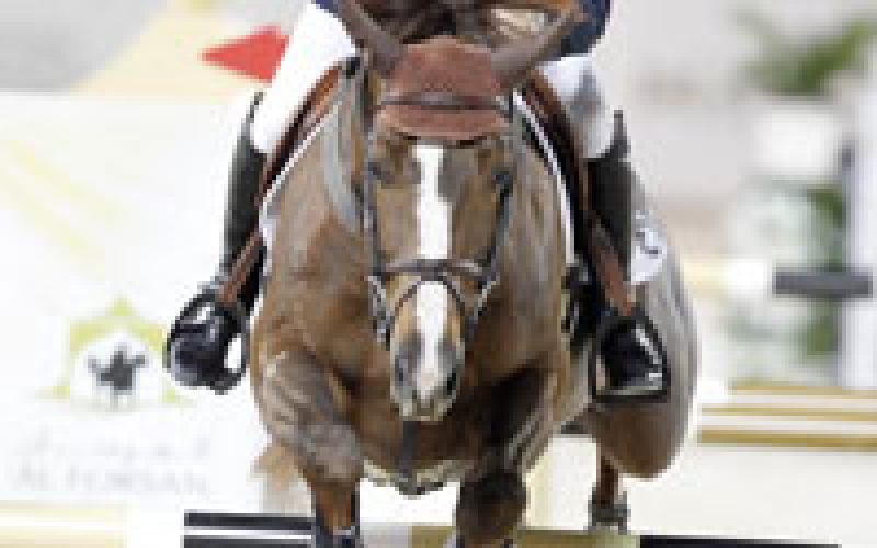Michael Whitaker and Mr Darcy claims victory in Abu Dhabi
