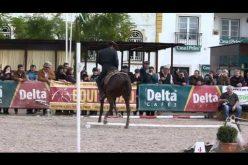 Eduardo Almeida e Xeique – Prova de Velocidade – Golegã 2011