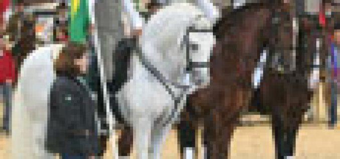 Brasil no Mundial de Equitação de Trabalho – Lyon
