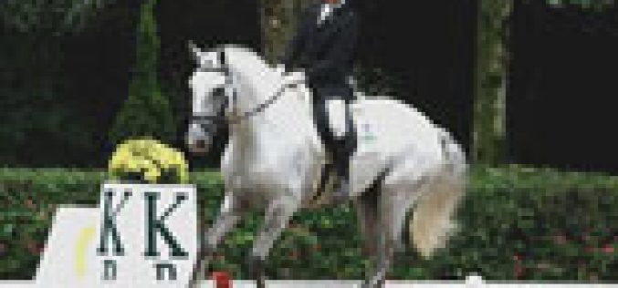 Lusitano mostra aptidão no FEI World Dressage Challenge