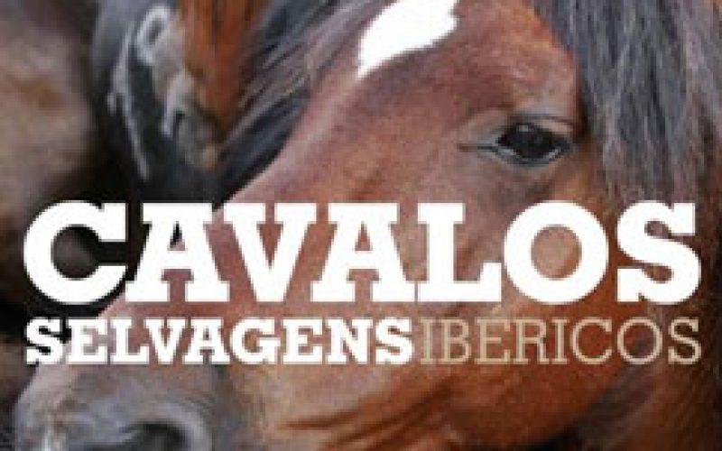 """Livro: """"Os cavalos selvagens da Península Ibérica"""""""