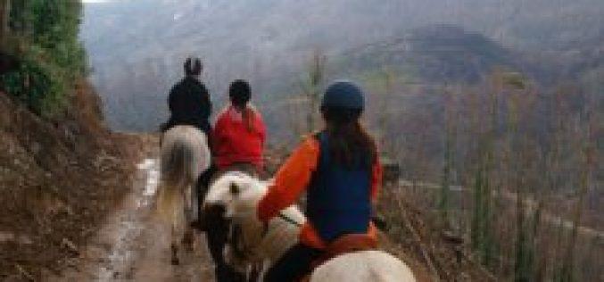 Turismo de Portugal aposta no Turismo Equestre