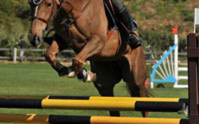 Segunda semana do Circuito do Sol para cavalos novos