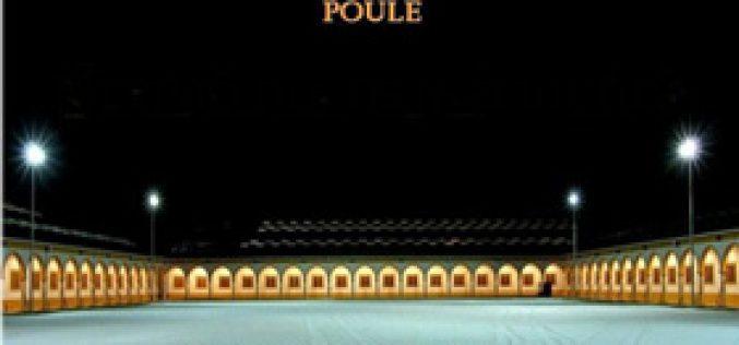 Taça de Portugal de Dressage – II Jornada