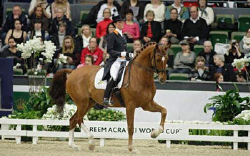 Adelinde e Parzival não vão disputar o Campeonato da Holanda