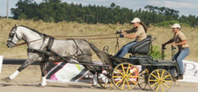 Pégões a Cavalo 2012