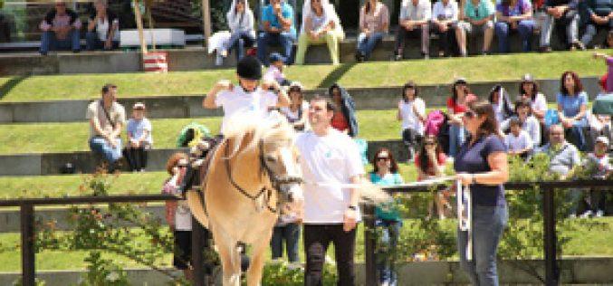 Feira do Cavalo de Ponte de Lima um evento de referência nacional e internacional