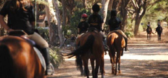 """""""Estágios de Verão 2012"""" – Escola de Equitação Rui Barroso"""