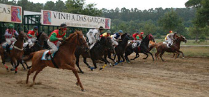Corridas de Cavalos com Apostas Legais até ao final do ano