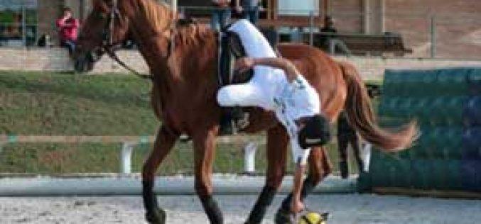 Exibição de Horseball durante o Campeonato da ABHIR